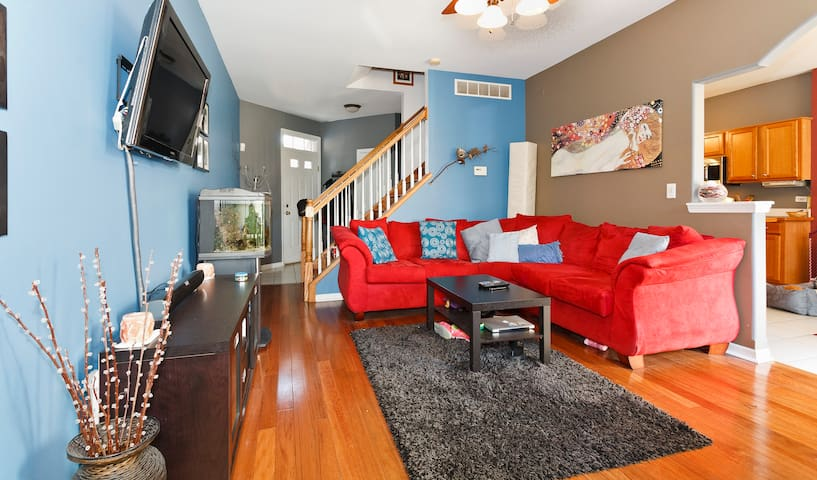 Cozy basement with private Bathroom - Bolingbrook - House