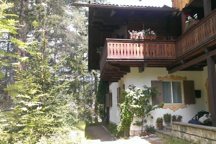 B&B Villa Dolomites Hut ¤¤¤