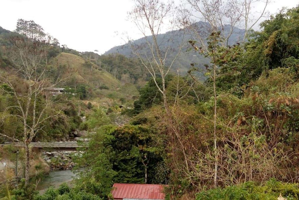 Puente del río Chirripó visto desde el jardin/ Bridge over Chirripo River seen from our garden.