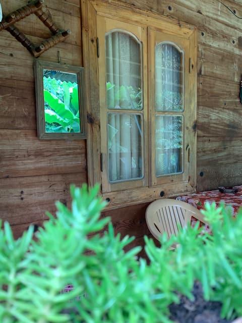 Wooden House Tsikhisdziri