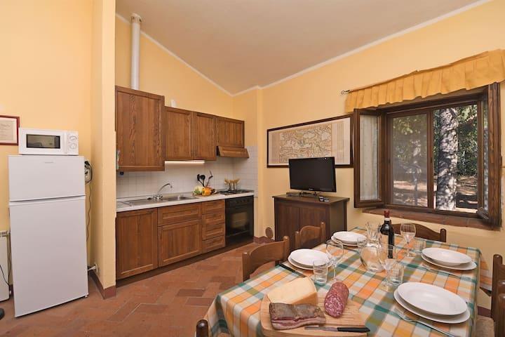 Castellare in Chianti, Timo