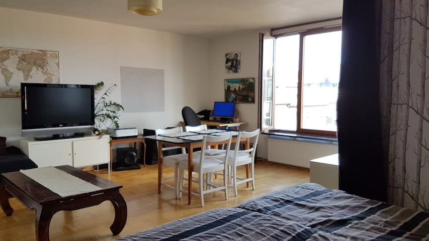 Central and fresh 46m2 apartment with a view - Stockholm - Wohnung
