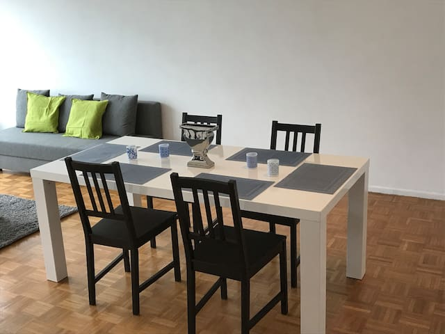 Nice and big apartment in Antwerp city