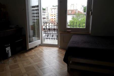 Charming 2 room-app, sunny balcony - Fribourg - Lägenhet