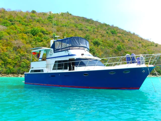 Windward Charter x 2 (from SVG)   - Port Elizabeth  Bequia - Barco