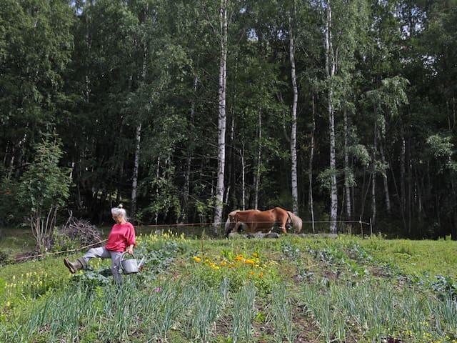 Eco Gardening Course -B&B Skifterud