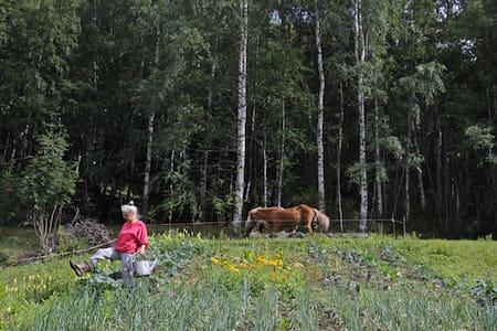 Eco Gardening Course -B&B Skifterud - Austbygdi