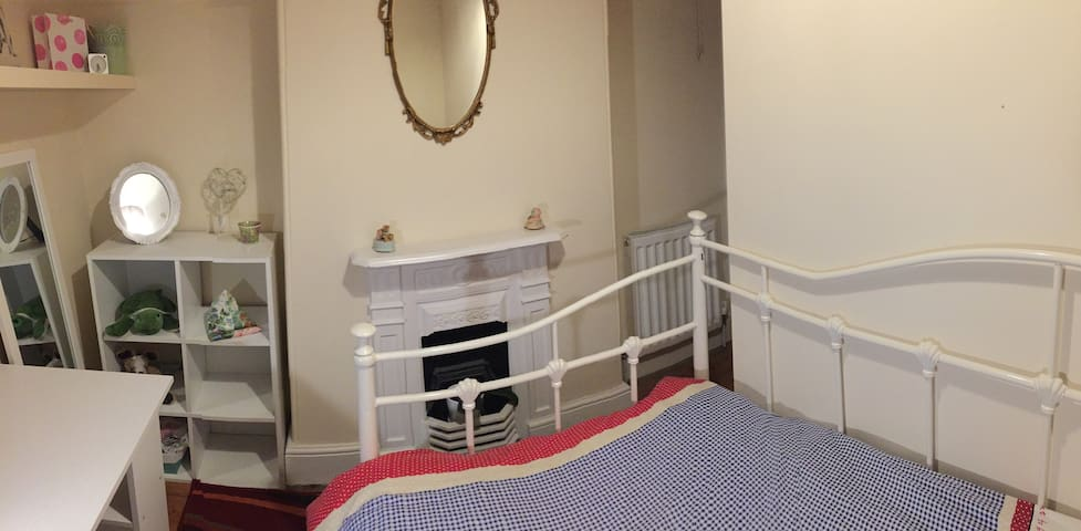 Central Newton Abbot, one single room