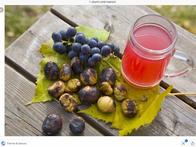 Traditionell und typisch für das steirische Weinbaugebiet - der herbstliche Genuss in der Buschenschank: Gebratene Maroni (Edelkastanien) und roter - oder weißer - Sturm (= nicht mehr Traubensaft, aber auch noch kein Wein)
