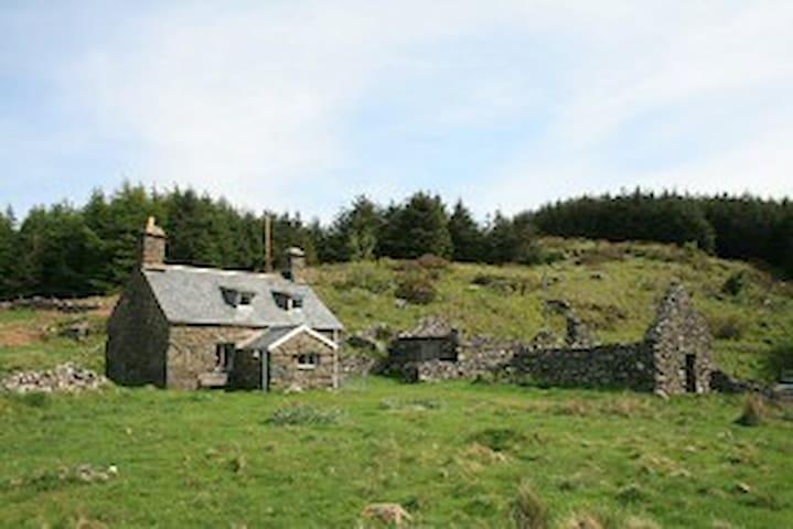 Magic Mountain Cottage - Cyfannedd - Dolgellau - 獨棟