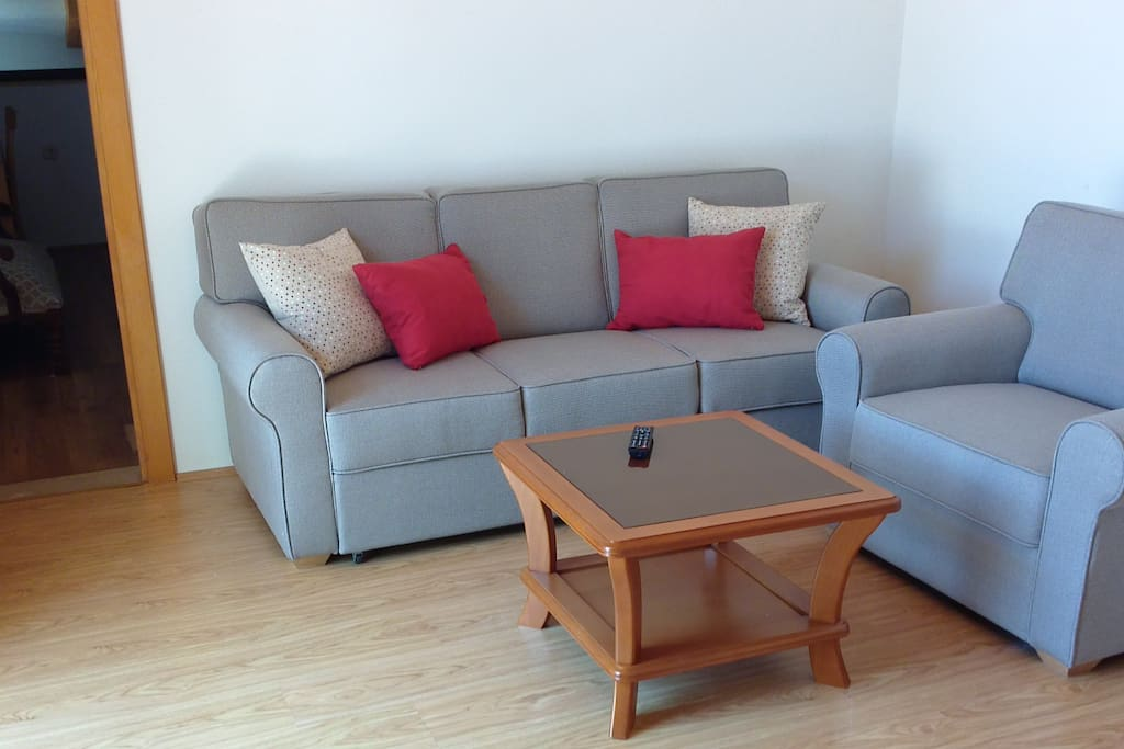 living room with pull out sofa for 2