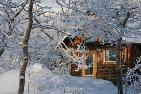 Traveling Light B&B - Lake View Cabin - Whitehorse