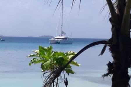 Alquiler de catamaran en San Blaa - Cerro Carti - Vaixell