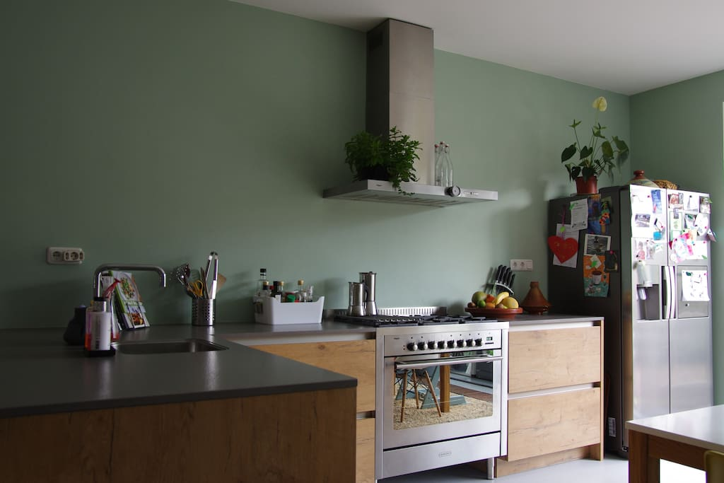 Modern kitchen with qooker (instant hot tea), oven and large fridge with ice-cube station.