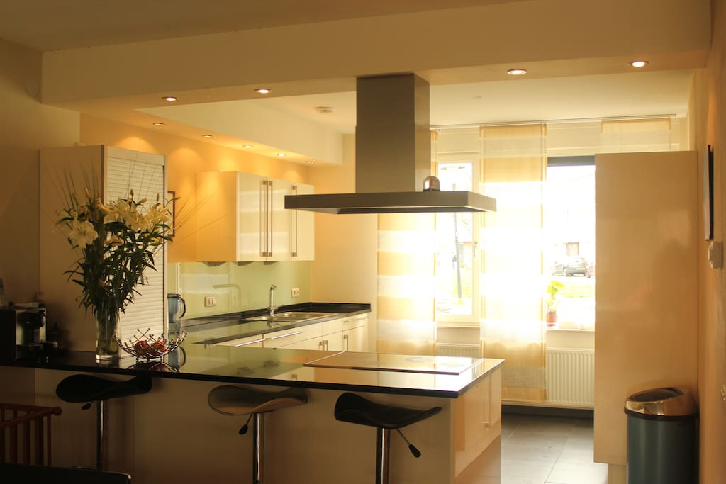 Luxurious kitchen (SIEMATIC), induction cooking plate (4), Hub, Wall units, Jalousie cupboard and numerous drawers