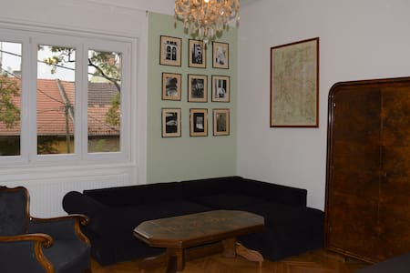 Buttonhouse - quiet apartment near the city - Budapest
