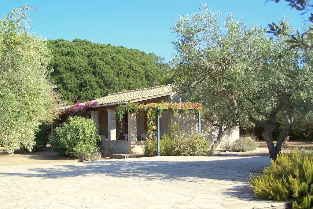 The house is at the corner of our 20.000 m2 land, next to the virgin kermes oak forest.