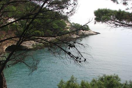 residence Pugnochiuso I Delfini - Pugnochiuso - Lägenhet