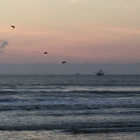 Morning view with shrimp boat