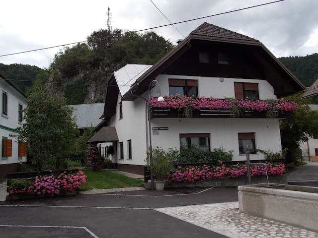 Rooms Gregorc-near Bled - Bohinjska Bela - Bed & Breakfast