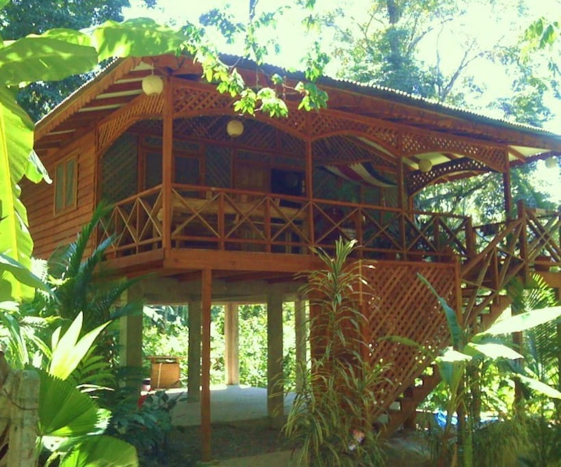 Custom jungle house by the ocean houses for rent in for Jungle house costa rica