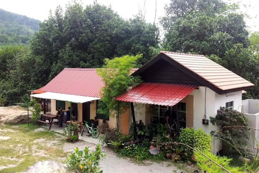 It is a nature wellness homestay