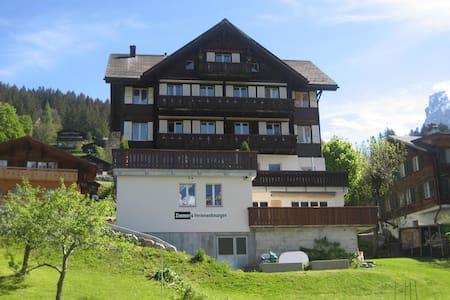 Studio in Grindelwald - Appartement