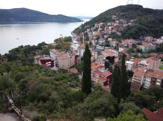 View of Bosphorus  - Istanbul