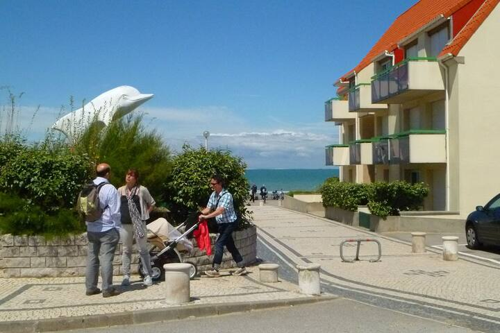 A pleasant little studio apartment with a terrace, 30 metres from the beach.