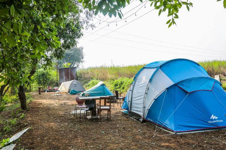 Pavna River side camping in premium family tent