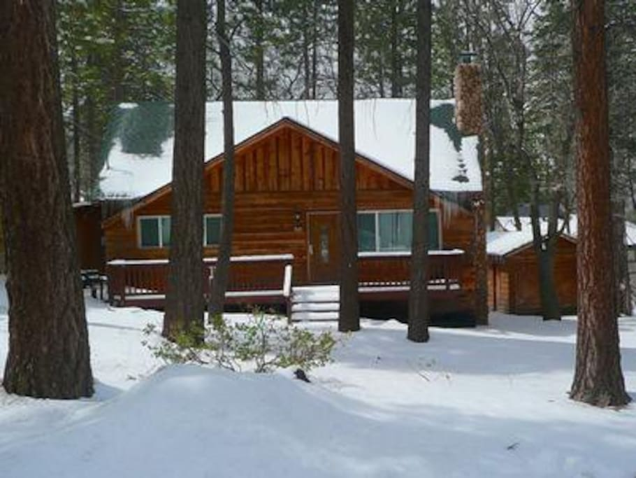 Winter at Forest Chalet