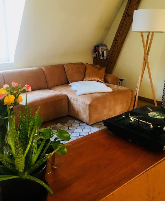 Living-/bedroom