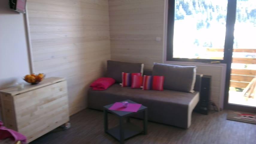 STUDIO COQUET A LA MONTAGNE - Chamrousse - Apartment
