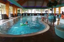 The swimmingpool
