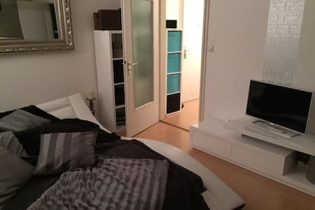Furnished 1 Bedroom Apartment - very central - Munich