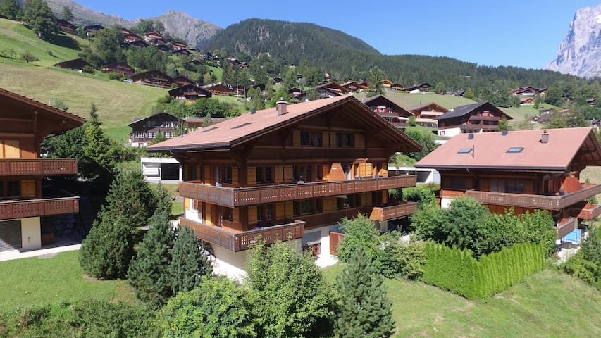 Apartment Eiger top floor - Grindelwald - Flat