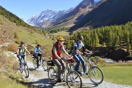 Discover Trentino... - Canal San Bovo - Apartmen