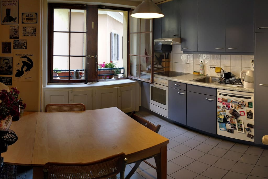 The kitchen of the apartment