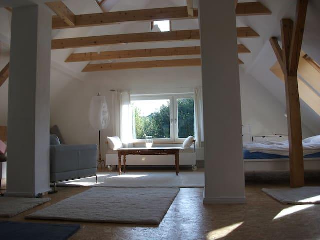Helle Ferienwohn. m. Sauna am Deich - Drochtersen - Apartamento