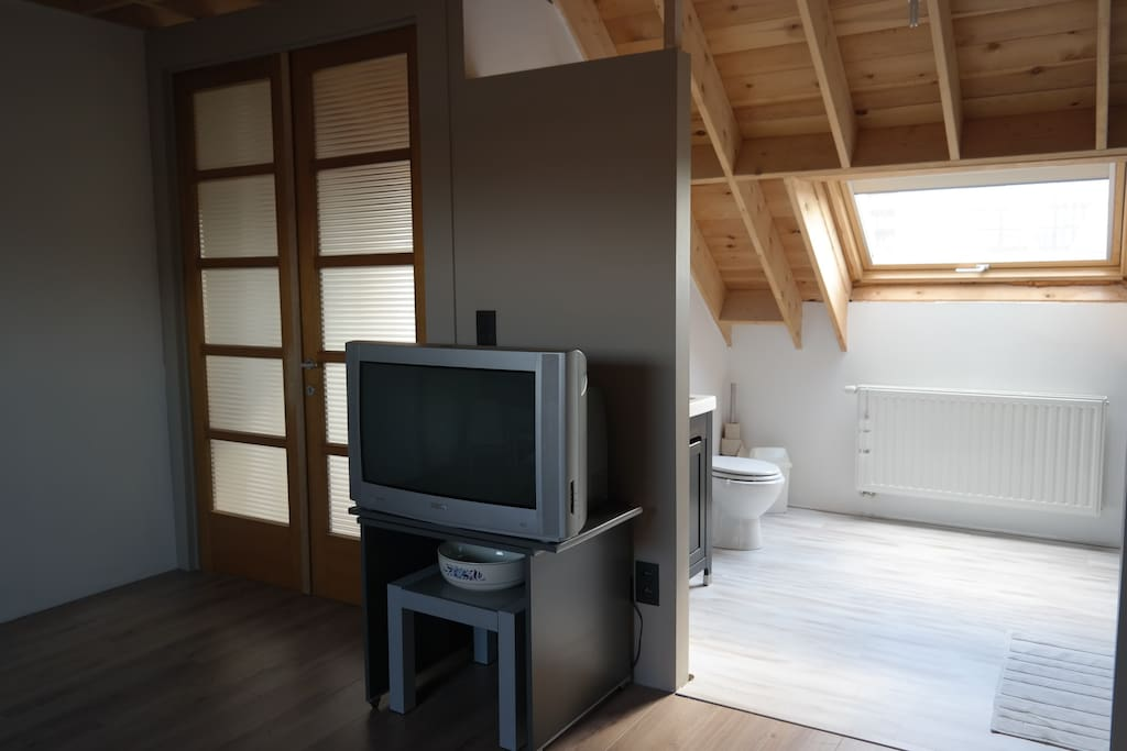 Entrance door, TV and en-suite bathroom with shower.