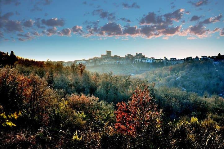Vacanze in Chianti all'Albergaccio  - Castellina In Chianti - 一軒家