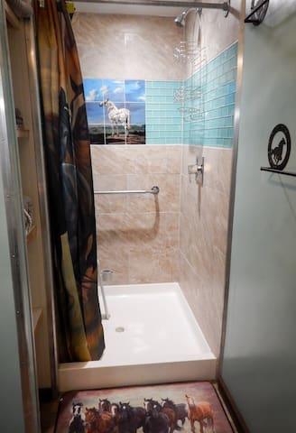 Equine theme shower in bathroom