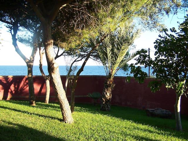 La Casita del Jardin - Cape Palos - Bungalow