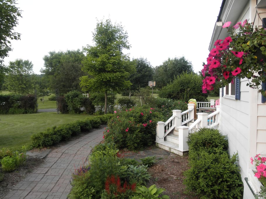 Walkway and Deck
