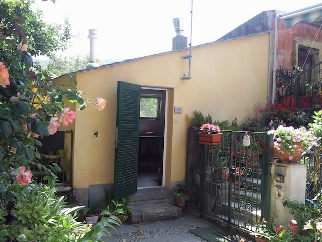 Typical  small house on the hill - San Giorgio di Bonassola - Appartement
