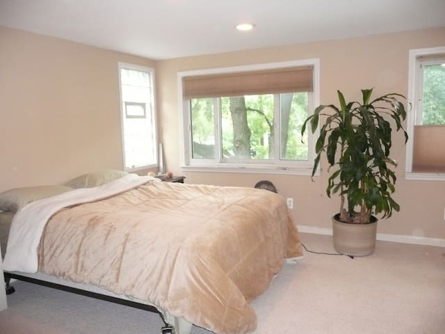 Large spacious bedroom with queen bed with lots of light and windows.
