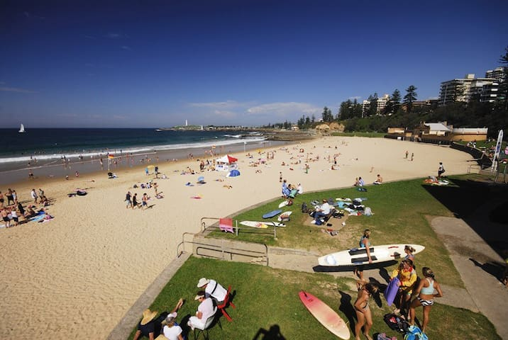 Room w/ ensuite. Beachside location - North Wollongong - Apartment