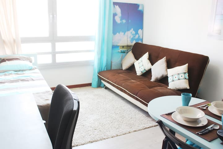 Lovely studio in the center of Lyon - Professional Cleaning