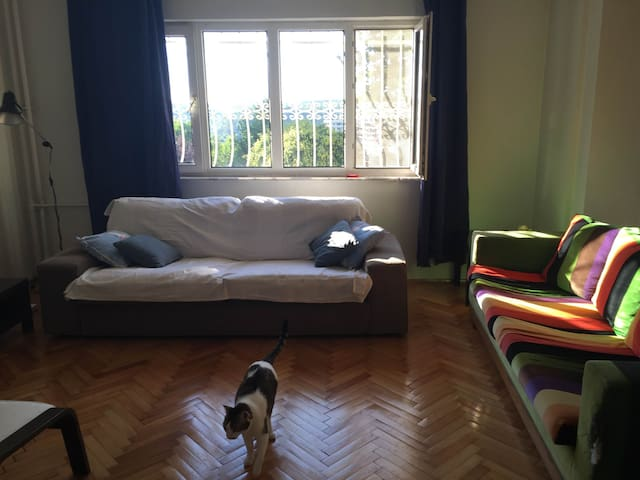 Green area, cosy&quiet w/2 cats, short/long term - Şişli - Daire