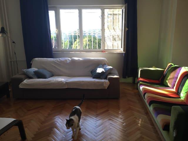 Green area, cosy&quiet w/2 cats, short/long term - Şişli - Apartment
